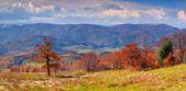 Montagne d'autunnale — Foto Stock