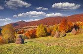 Panorama gór jesień. — Zdjęcie stockowe