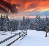 Dramatic winter landscape in the mountains. — Stock Photo