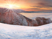 Winter sunrise in the Carpathian mountains — Stock Photo