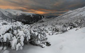 Winter evening in the Carpathian mountains — Stock Photo