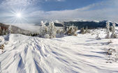 Winter in the Carpathian mountains — ストック写真