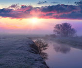 Dawn on the river in autumn. — Stock Photo