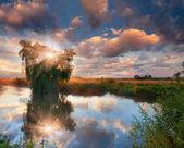 夏の風景、川に. — ストック写真