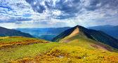 Panorama de la montaña de los cárpatos en verano — Foto de Stock