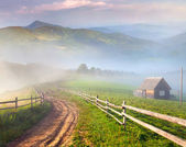 Summer landscape in a mountain village. — Stock Photo