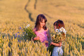 Girls with bouquets of flowers in field — Stock Photo