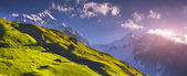 Alpine meadows at the foot of Tetnuldi glacier — Stock Photo