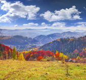 Colorful autumn landscape in the mountain village. — Stock Photo