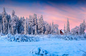Snowfall covered the trees and houses in the mountain village.  — Stock Photo