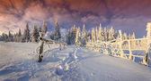 山の冬の朝 — ストック写真