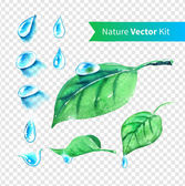 Hand drawn water drops and leaves — Stock Vector