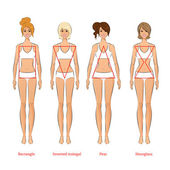 Female body types — Stock Vector