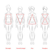 Female body types — Stock Vector