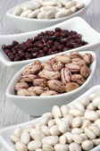 Different type of beans — Stock Photo