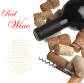 Bottle of red wine — Stock Photo