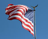 Old Glory — Stock Photo