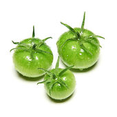 Immature green tomatoes — Stock Photo