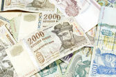 Hungarian currency — Stock Photo