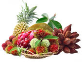Assortment of exotic fruits isolated on white background — Stock Photo