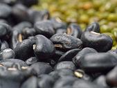 Black beans background — Stock Photo