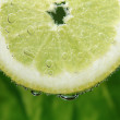 A lemon slice in the sparkling water — Stock Photo #51454925