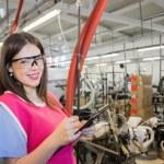 Female employer inspecting — Stock Photo #51505237