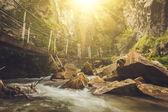Paesaggio di fiume di montagna tranquillo con il sole nascente