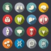 Emberi szervek ikon készlet