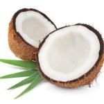 Постер, плакат: Coconuts with leaves