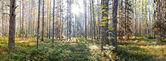 俄罗斯北部国家公园