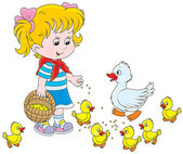 Little girl feeds a white duck and small yellow ducklings