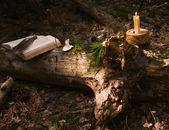 čarodějnice místo pro přípravu lektvarů