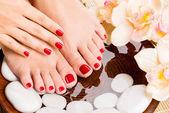 Krásné ženské nohy v salonu spa pedikúra postupu