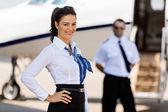 2mitglieder lächelnd mit pilot und private Jet im Hintergrund