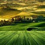 Постер, плакат: Tuscany Italy