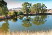 Photograph of a small lake