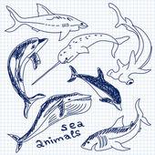 Sea animals simple drawing vector