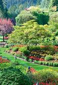 Vmáčknutý zahrada v butchart gardens, centrální Glossop, britský sloupec