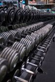 Dumbbell Rack with Silver and Black Weights