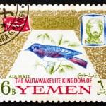 Постер, плакат: Postage stamp Yemen 1965 Cinnyricinclus Leucogaster Bird