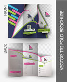 Dance Academy Tri-Fold Mock up & Brochure Design
