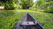 Canoe at kerala backwaters, india
