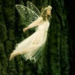 Постер, плакат: Flying fairy