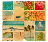 Tropical collage on a piece of old paper, illustration
