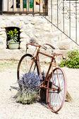 Kolo, provence, Francie