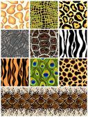 Set seamless the patterns animals Vector illustration