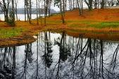 Beautiful park at autumn