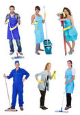 Professional cleaners with equipment