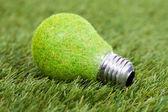 Energiesparlampe auf grünem Gras